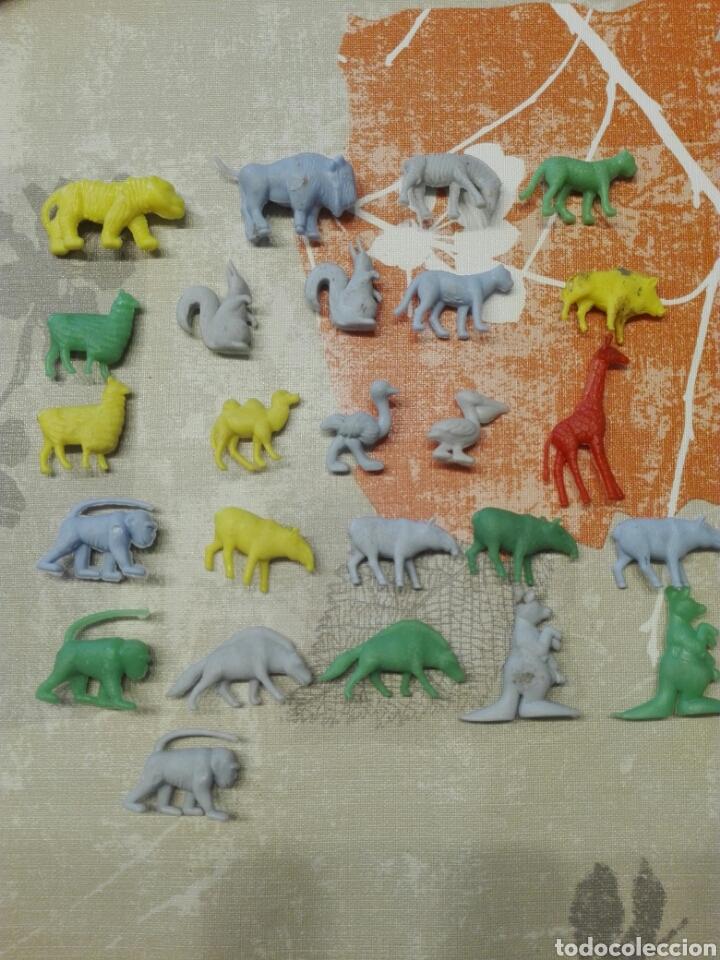 LOTE 25 FIGURAS DUNKIN SERIE FIERAS DEL ZOO (Juguetes - Figuras de Goma y Pvc - Dunkin)
