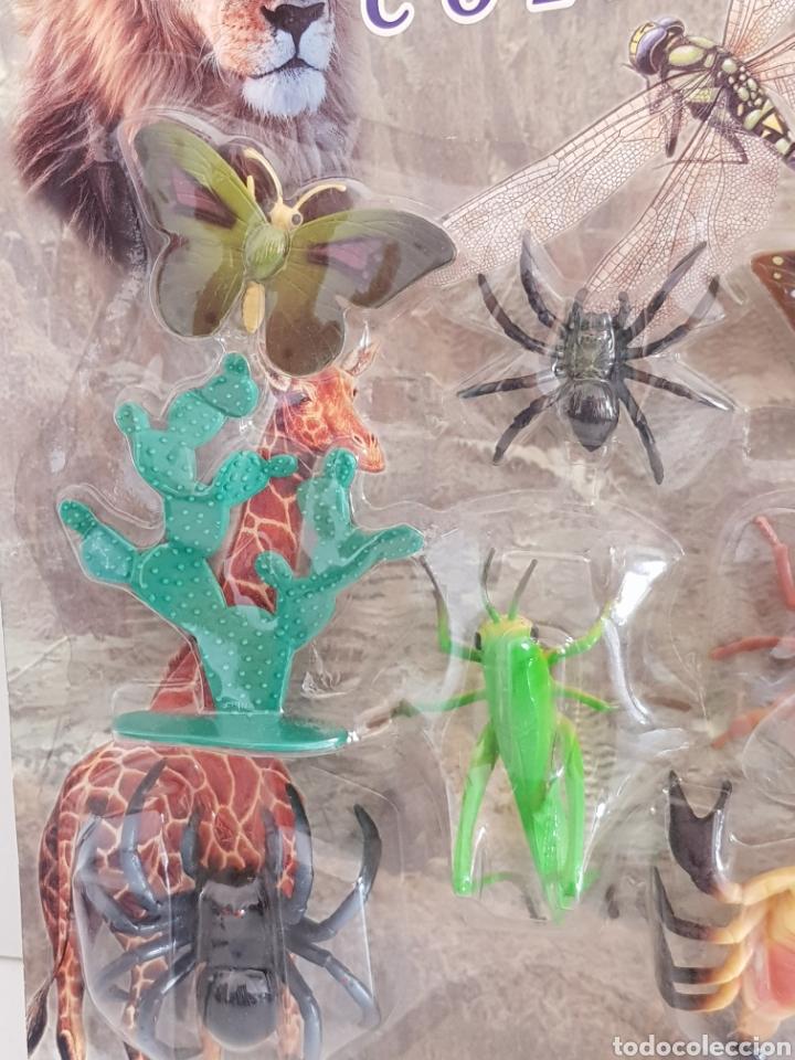 Figuras de Goma y PVC: SET ANIMALES DE LA NATURALEZA MARIPOSAS, TARANTULA, ESCORPION, SALTAMONTE Y CIGARRA creature COLLECT - Foto 3 - 115075359