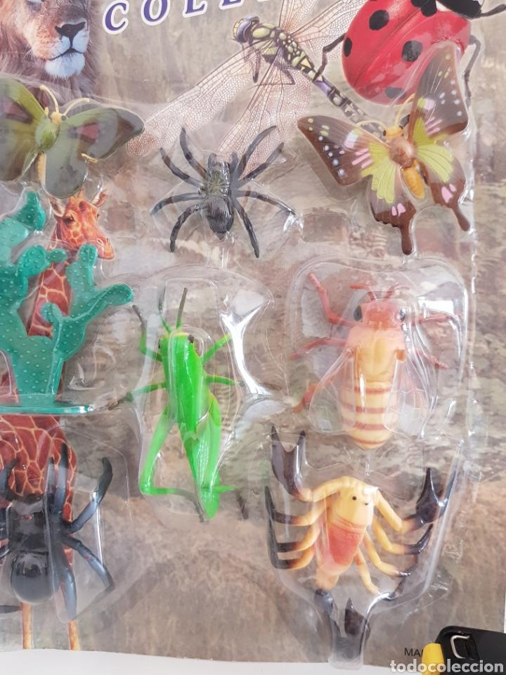 Figuras de Goma y PVC: SET ANIMALES DE LA NATURALEZA MARIPOSAS, TARANTULA, ESCORPION, SALTAMONTE Y CIGARRA creature COLLECT - Foto 4 - 115075359