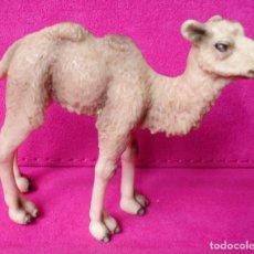 Figuras de Goma y PVC Schleich: FIGURA SCHLEICH CAMELLO 2008. Lote 115191399