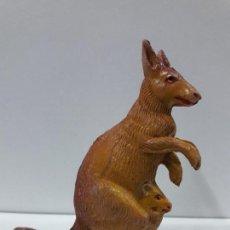 Figuras de Goma y PVC: CANGURO . REALIZADO POR PECH . SERIE FIERAS - HISTORIA NATURAL . AÑOS 50 EN GOMA. Lote 115310667
