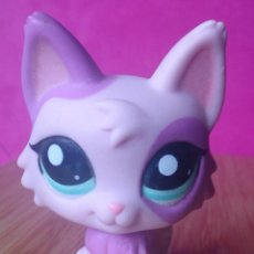 Figuras de Goma y PVC: FIGURA LPS LITTLEST PET SHOP HASBRO GATO CAT PERSA 2100. Lote 121118739