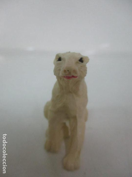 Figuras de Goma y PVC: Oso Polar - Figura de Plástico - Zoo - Marca Comansi - Años 60 - Foto 2 - 128304327
