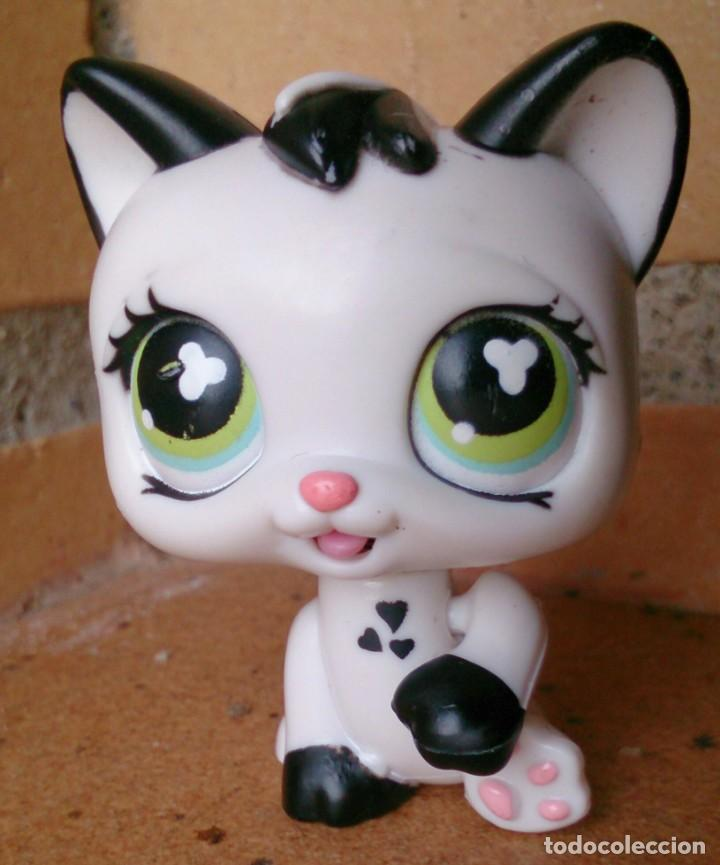 FIGURA LPS LITTLEST PET SHOP HASBRO 2005 GATO CAT MÁGIC EYES MOVING 493 (Juguetes - Figuras de Goma y Pvc - Otras)