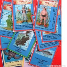 Figuras de Goma y PVC: COLECCIÓN DE FICHAS -CROMOS DE LA SERIE FAUNA MARINA, DE JECSAN, PARA COLECCIONISTAS DE FIGURAS.. Lote 260790445