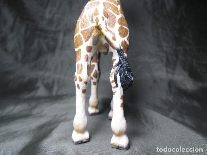 Figuras de Goma y PVC: JIRAFA SCHLEICH ALIMENTANDOSE 2008 17,5 CM MUY BUEN ESTADO - Foto 11 - 137491686