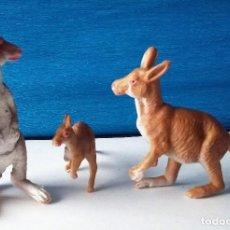 Figuras de Goma y PVC: CANGUROS. FAMILIAS ANIMALES SALVAJES OLIVER AÑOS 80. Lote 138722246