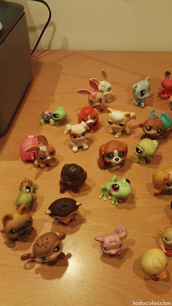 Figuras de Goma y PVC: Lote Littlest Pet Shop - Foto 2 - 150825542