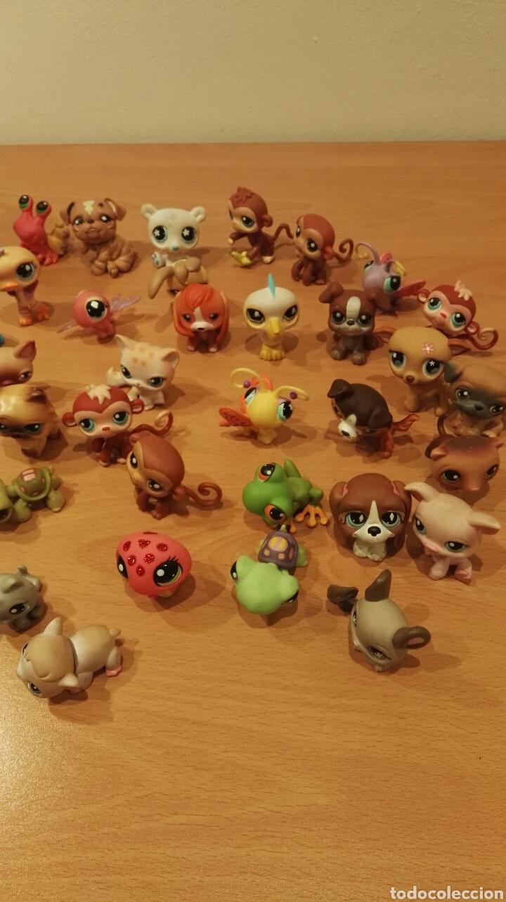 Figuras de Goma y PVC: Lote Littlest Pet Shop - Foto 4 - 150825542