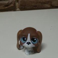Figuras de Goma y PVC: HASBRO LITTLES PET SHOP. Lote 153336636