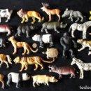 Figuras de Goma y PVC: LOTE 24 ANIMALES PVC. Lote 160539930