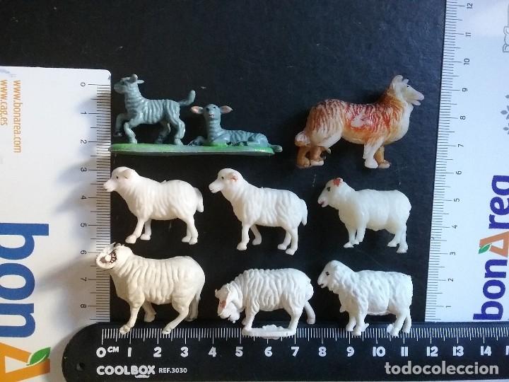 Figuras de Goma y PVC: LOTE BRITAINS ANIMALES GRANJA DIORAMA CERDO VACA CORDERO GALLO PERRO OCA POLLO PAVO CABALLO. PTOY - Foto 4 - 79309569