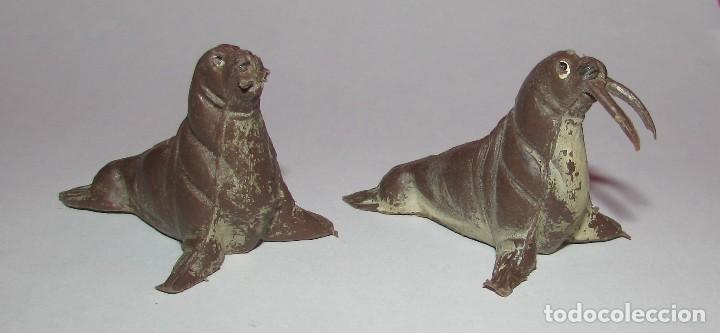 Figuras de Goma y PVC: MORSA SERIE FIERAS - PECH - AÑOS 60 - DOS MORSAS - Foto 7 - 168836708
