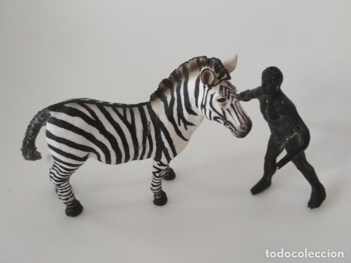 FIGURA CEBRA GOMA (Juguetes - Figuras de Goma y Pvc - Arcla)