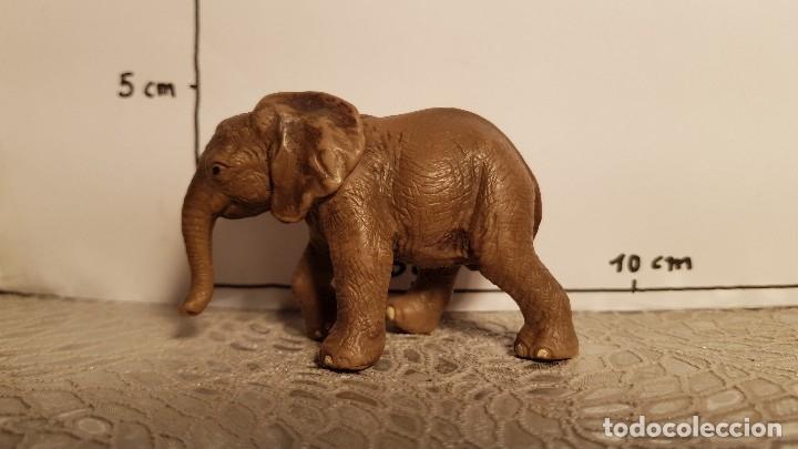Figuras de Goma y PVC: Elefante de juguete Schleich - Foto 3 - 175123988