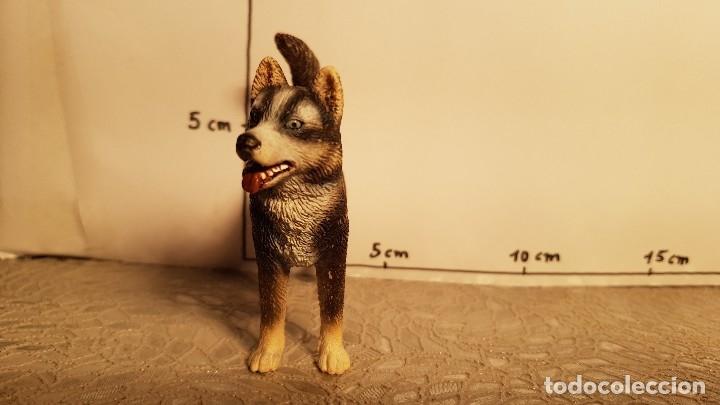 Figuras de Goma y PVC: Perro de juguete Schleich - Foto 2 - 175124318