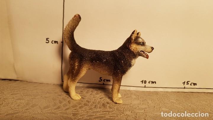 Figuras de Goma y PVC: Perro de juguete Schleich - Foto 3 - 175124318