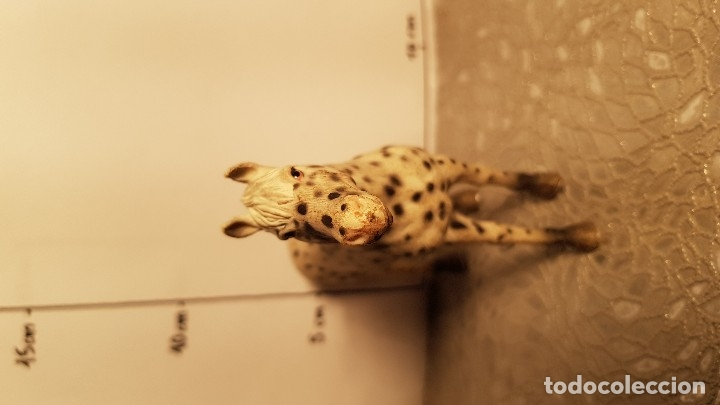 Figuras de Goma y PVC: Caballo de juguete Schleich - Foto 3 - 175126752