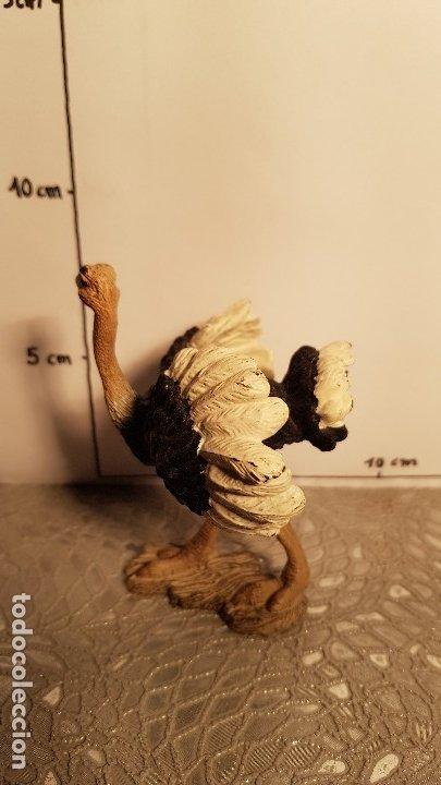 Figuras de Goma y PVC: Avestruz de juguete Schleich - Foto 2 - 175126993