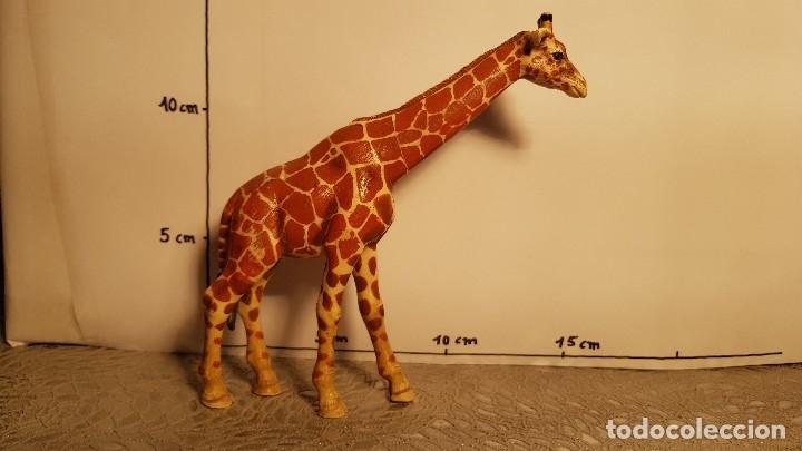 Figuras de Goma y PVC: Jirafa de juguete Schleich - Foto 3 - 175127049