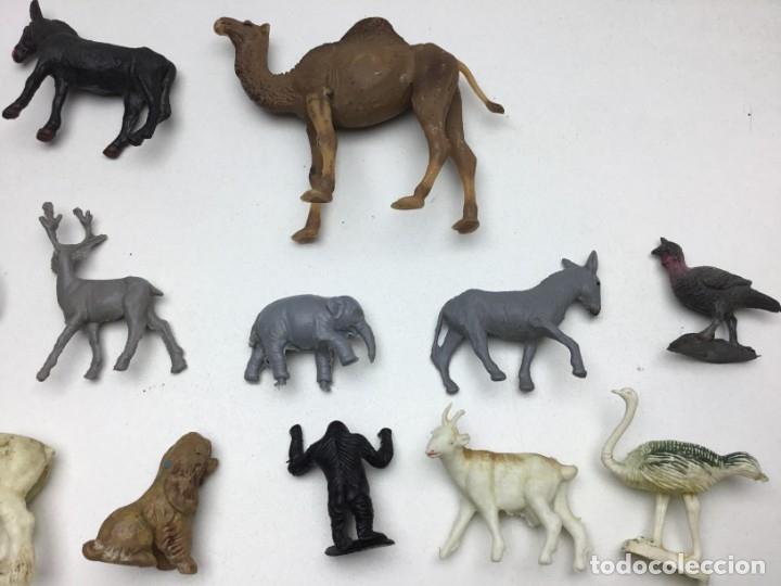 Figuras de Goma y PVC: GRAN LOTE DE 14 FIGURAS DE PLASTICO-GOMA - ANIMALES VARIOS- AÑOS 70/80 - Foto 9 - 178101669