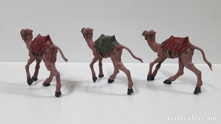 Figuras de Goma y PVC: TRES CAMELLOS . SERIE LAWRENCE DE ARABIA . REALIZADOS POR REAMSA . AÑOS 50 EN GOMA - Foto 4 - 182558127