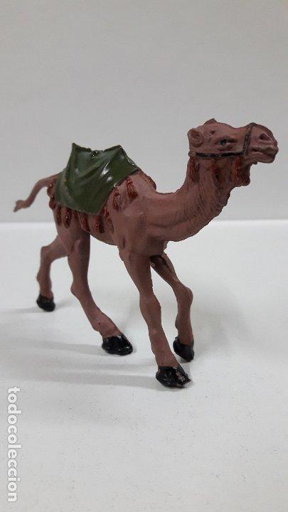 Figuras de Goma y PVC: CAMELLO . SERIE LAWRENCE DE ARABIA . REALIZADO POR REAMSA . AÑOS 50 EN GOMA - Foto 3 - 182660295