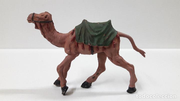 Figuras de Goma y PVC: CAMELLO . SERIE LAWRENCE DE ARABIA . REALIZADO POR REAMSA . AÑOS 50 EN GOMA - Foto 2 - 183374432