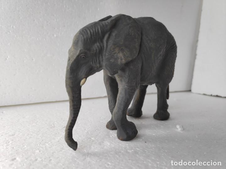 Figuras de Goma y PVC: Soberbia figura de elefante africano joven - Foto 3 - 184111758