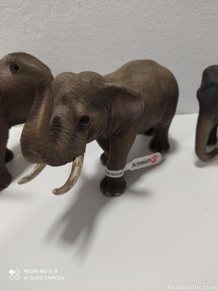 Figuras de Goma y PVC: Familia 3 elefantes schleich - Foto 3 - 192822763