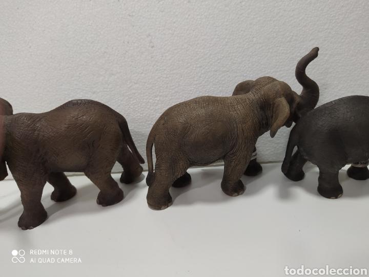 Figuras de Goma y PVC: Familia 3 elefantes schleich - Foto 5 - 192822763