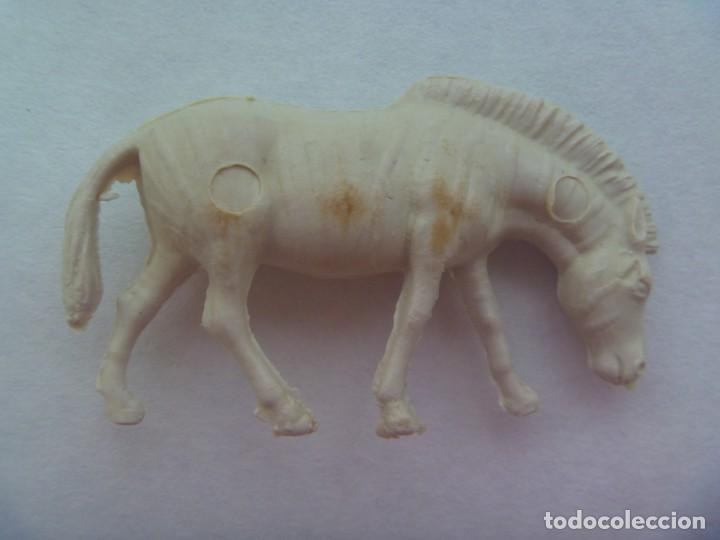 FIGURA DE PERSAN COLECCION ANIMALES : CEBRA (Juguetes - Figuras de Goma y Pvc - Dunkin)