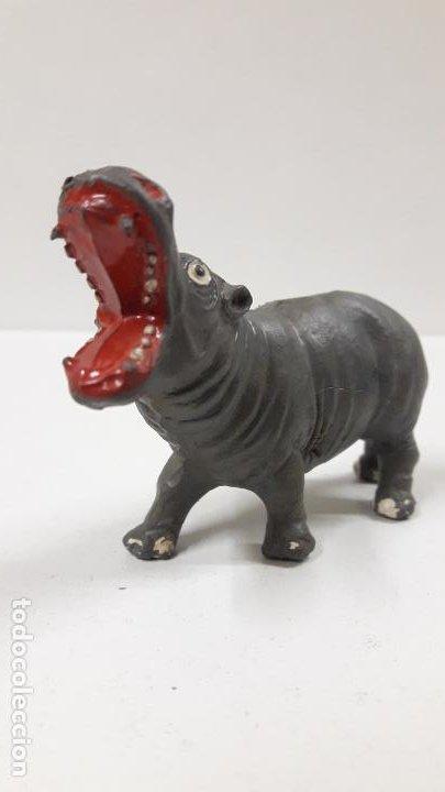 Figuras de Goma y PVC: HIPOPOTAMO . REALIZADO POR TEIXIDO . SERIE MORCILLON Y BABALI . AÑOS 50 EN GOMA - Foto 5 - 193198985