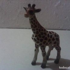 Figuras de Goma y PVC: SCHLEICH JIRAFA CRIA ANIMAL. Lote 197257300