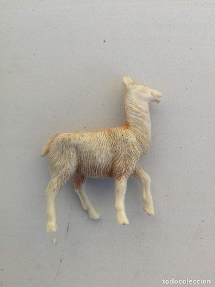 Figuras de Goma y PVC: ANTIGUA LLAMA DE PLASTICO DE JECSAN O PECH - AÑOS 70 - - Foto 2 - 198649965