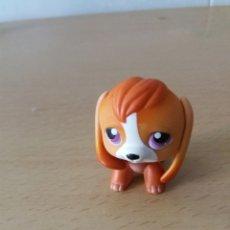 Figuras de Goma y PVC: LITTLETS PETS. Lote 203892378