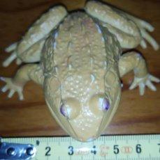 Figuras de Goma y PVC: RANITA PLASTICO. Lote 209064896