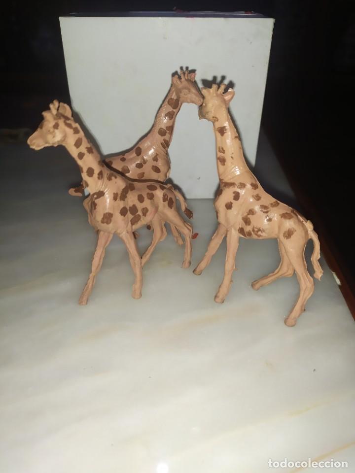 FIGURAS COMANSI PVC ANIMALES LOTE DE GIRAFAS (Juguetes - Figuras de Goma y Pvc - Comansi y Novolinea)
