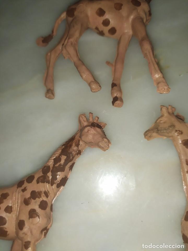 Figuras de Goma y PVC: Figuras comansi pvc animales lote de girafas - Foto 3 - 288388038