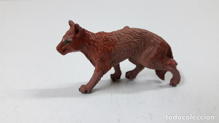 Figuras de Goma y PVC: LOBO . REALIZADO POR LAFREDO . ORIGINAL AÑOS 50 EN GOMA - Foto 2 - 222487126