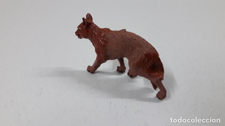 Figuras de Goma y PVC: LOBO . REALIZADO POR LAFREDO . ORIGINAL AÑOS 50 EN GOMA - Foto 4 - 222487126