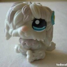 Figuras de Goma y PVC: FIGURA LITTLEST PET SHOP. PERRITO. HASBRO 2007. Lote 227167882