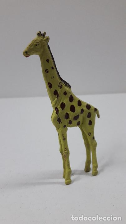 Figuras de Goma y PVC: JIRAFA . REALIZADO POR GAMA . SERIE PLANA . ORIGINAL AÑOS 50 EN GOMA - Foto 2 - 231971310