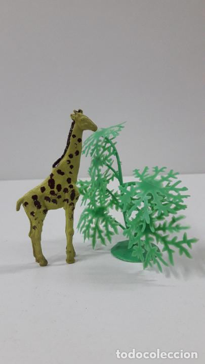 Figuras de Goma y PVC: JIRAFA . REALIZADO POR GAMA . SERIE PLANA . ORIGINAL AÑOS 50 EN GOMA - Foto 6 - 231971310