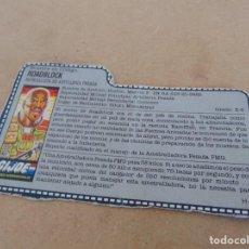 Figuras y Muñecos Gi Joe: FIGURA DE ACCION GIJOE GI JOE, COMPLEMENTO ,CARTON, FICHA ,TARJETA. Lote 289868823