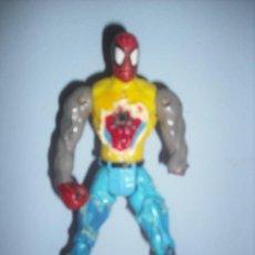Figuras y Muñecos Marvel: SPIDERMAN ARTICULADO EN PLENA TRANSFORMACION. Lote 147322170