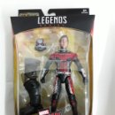 Figuras y Muñecos Marvel: FIGURA ANT-MAN INFINITY WAR MARVEL LEGENDS. Lote 168578328