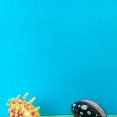 Figuras y Muñecos Marvel: PLANTAS VENOM MARVEL. Lote 274219248