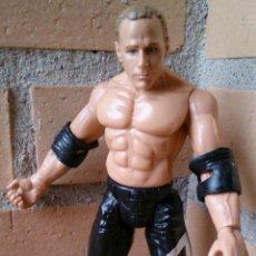 Figuras y Muñecos Pressing Catch: FIGURA WWE TITAN TRON 1999 JAKKS PACIFIC . Lote 51029643