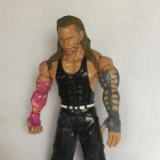 Figuras y Muñecos Pressing Catch: FIGURA DE WWE 2003 JAKKS PACIFIC. Lote 93094255